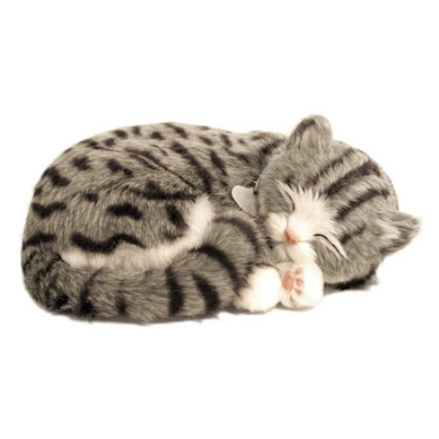 perfect petzzz gray tabby