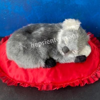 perfect petzzz koala