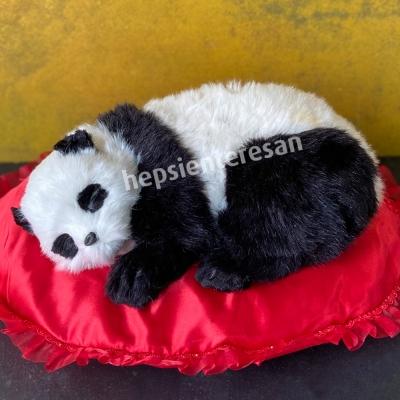 perfect petzzz panda