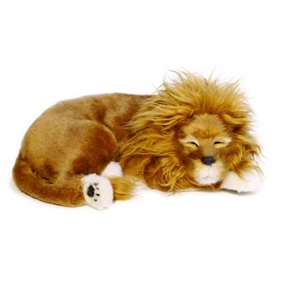 perfect petzzz aslan
