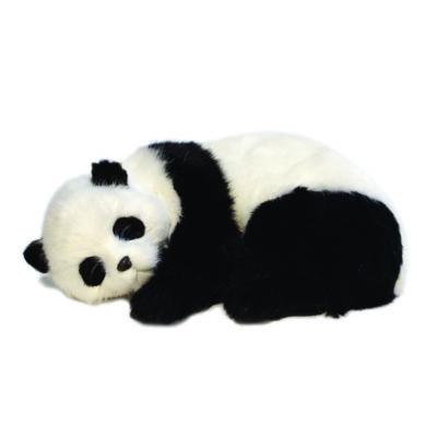 panda ve taşıma çantası